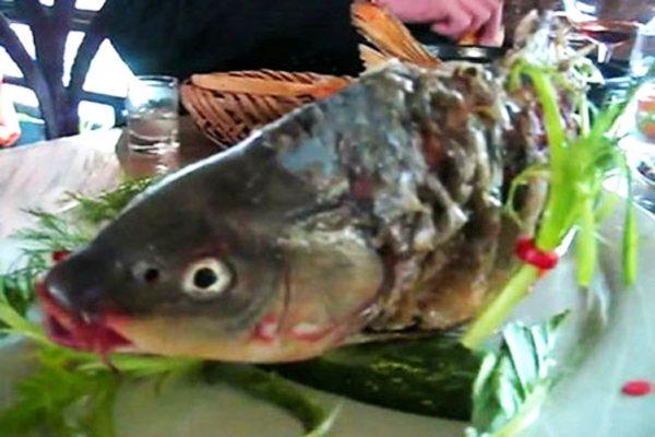 07ปลาสองแผ่นดิน004