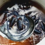 soup-of-cockroaches